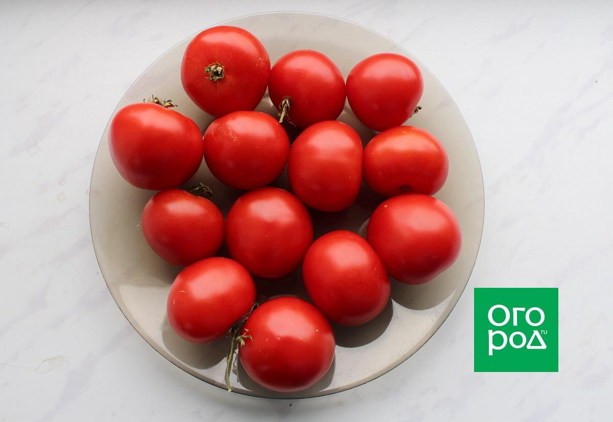томаты Румба Ожаровская