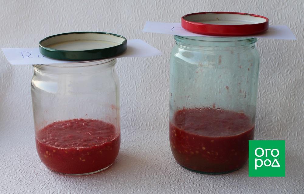 получить семена томатов